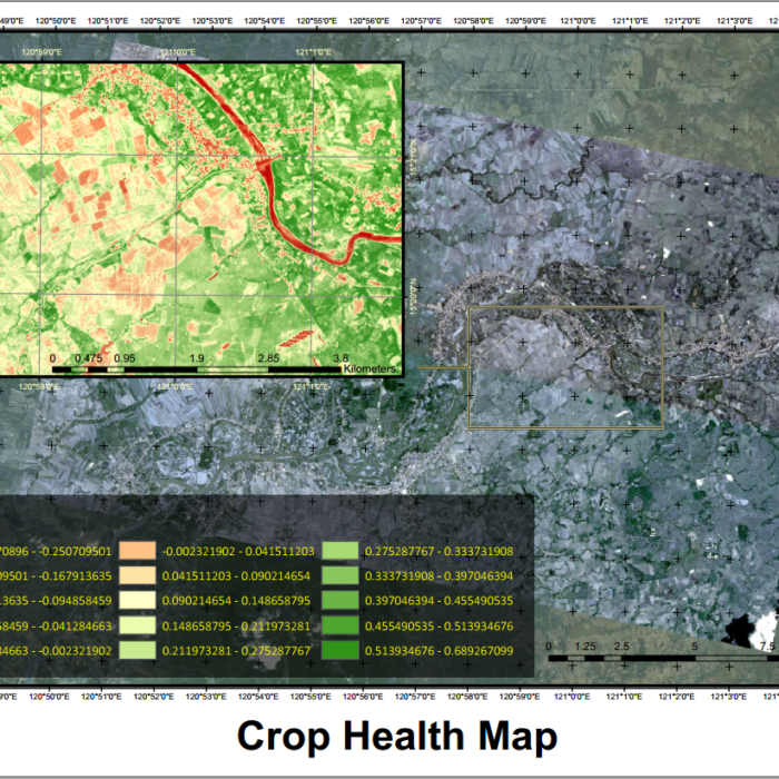 Crop Health Map (NDVI)
